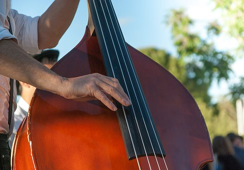 Double Bass, Musician, Music, Strings, Orchestra