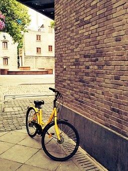 Shared Bike, Tourism, Bicycle