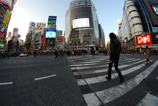 Japan, Fisheye, Tokyo, Street, Shibuya, Traffic, Nikon