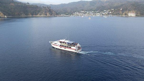 Cruise, Tender, Catalina, Travel, Boat, Ship, Vacation