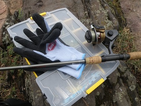 Fish, Fishing, Fishing Rod, Tackle Box, Glove, Nature