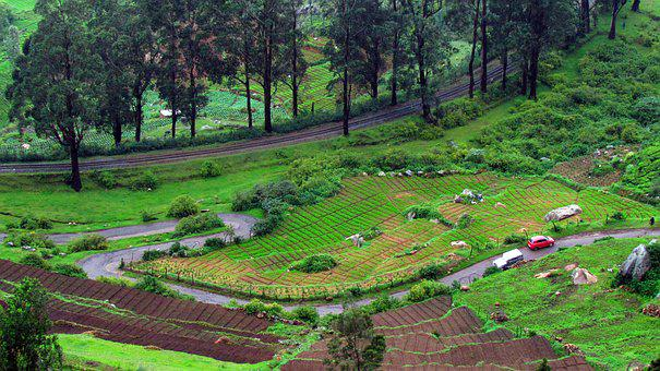 Ooty, Green, Mountain, Nature, Railway, Agriculture