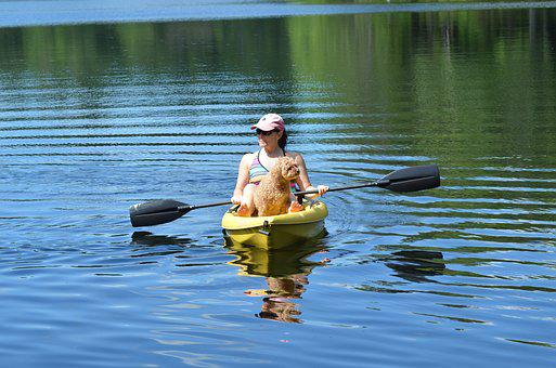 Canoe, Lake, Dog, Paddle, Lifestyle, Ripples, Summer