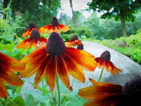 Cornflowers, Flowers, Watercolor, Garden, Spring
