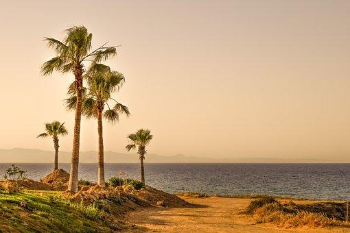 Palm Trees, Sea, Horizon, Landscape, Nature, Afternoon