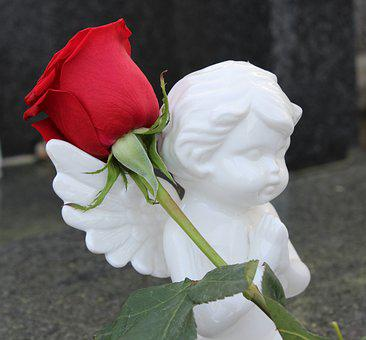 Stop Child Suicide, Angel, Red Rose