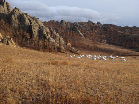 Mongolia, National Park, Steppe, Autumn, Gold