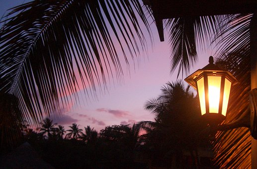 Sunset, Dominican Republic, Light, Palm Trees
