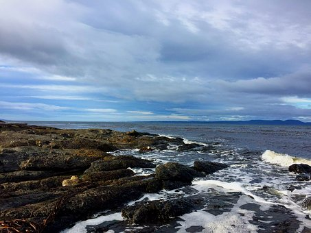 Punta Arenas, Chile, Beach, Coastal Landscape, Sunset