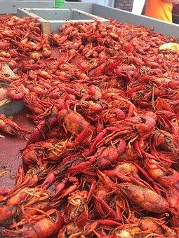 Crawfish, Crawfish Boil, Crustacean, Traditional
