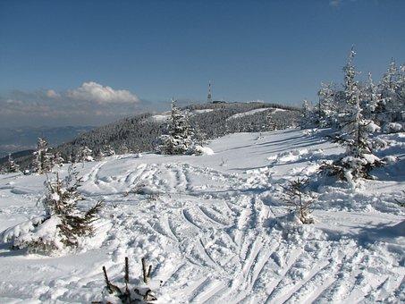 View, Skis, Snow, Mountains, Biel, Nature, Stok, Winter