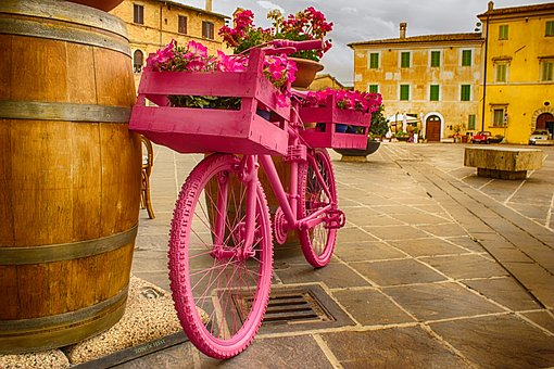 Bicycle, Rosa, Botte, The Giro D'italia, Flowers, Bike