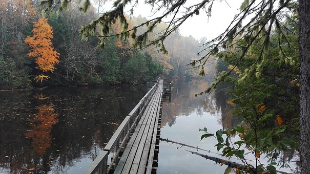 Mauricie, Park, Lake, Bridge, Floating, Nature, Trees