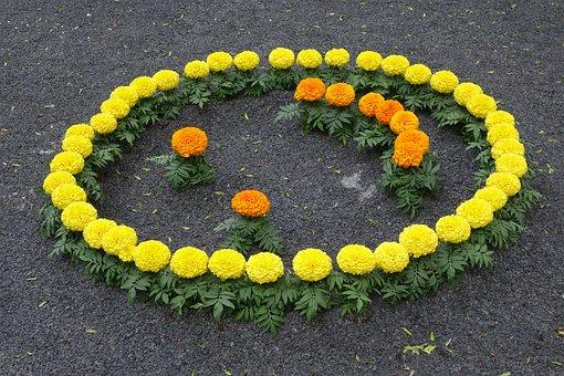 Floral Smiley, Yellow Orange Tagetes, Exhibition