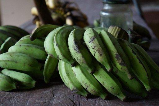 Bananas, Green, Cultivation, Fruit, Nature, Banana Tree