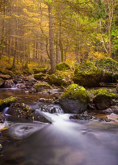 Autumn, Waterfall, Long Exposure, Bach, Waters, Flow