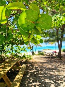 Nature, Beach, Water, The Coast, Landscape, Sandy Beach