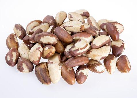 Brazil Nut Seeds Natural, Nuts, Eat, Nature, Nut