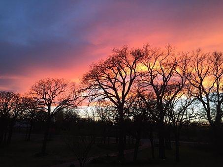 Sunset, Orange, Sun, Yellow, Purple, Pink, Sky, Nature