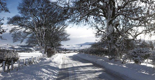 Snow, Landscape, Rothbury, Winter, Cold, Nature, Season