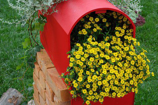 Red Postbox, Yellow Flower, Flower Exhibition