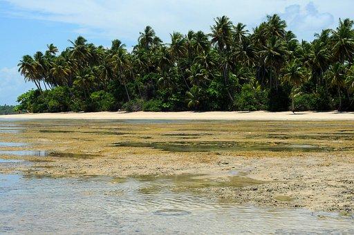 Boipeba, Brazilwood, Sea