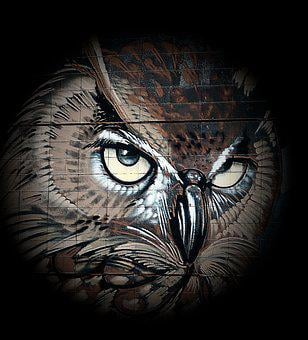 Owl, Drawing, Bird, Art, Eagle Owl, Animals