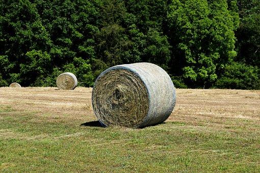 Hay, Bale, Agriculture, Farm, Straw, Field, Farming