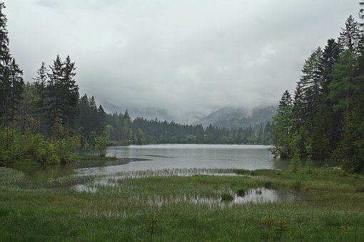 Lost Places, Fog, Trist, Gloomy, Reed, Bergsee, Mood