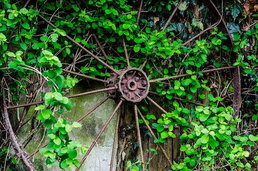 Leaf, Wheel, Rust, Old, Vintage, Metal, Retro, Antique