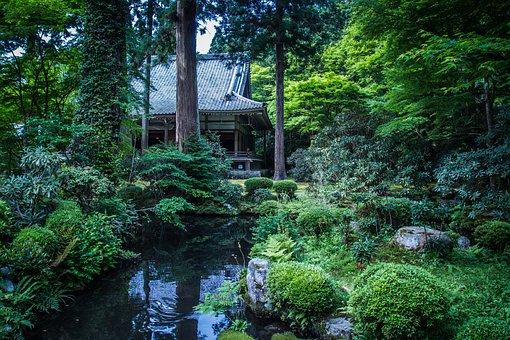 Landscape, Natural, Garden, Japan, Plant