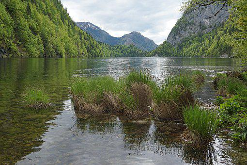 Lake, Pond, Mountains, Nature, Water, Waters, Reed