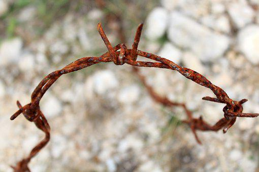 Wire, Barbed Wire, Stainless, Stone, Rocky Soil, Metal