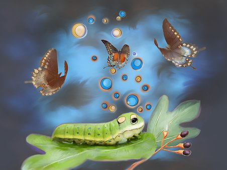 Spicebush Swallowtail, Caterpillar, Fantasy, Photo Art