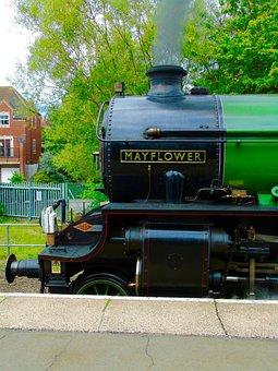 Mayflower, Train, Steam, Railway