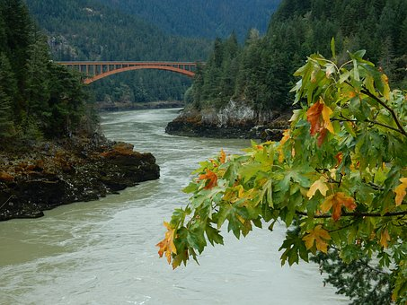 Fraser River, British Colombia, Canada