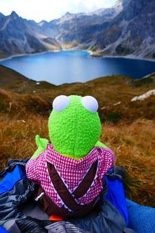 Reservoir, Dam, Lüner Lake, Kermit, Frog, Green, Doll