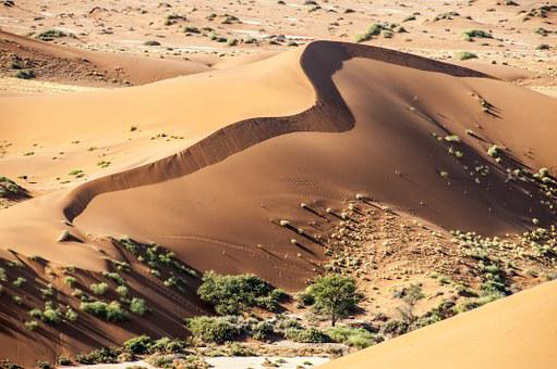 Namibia, Wolwedans, Namib Edge, Desert, Away, Sand