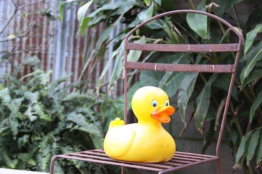 Rubber Duck, Chair, Iron, Rubber, Duck, Toys, Garden