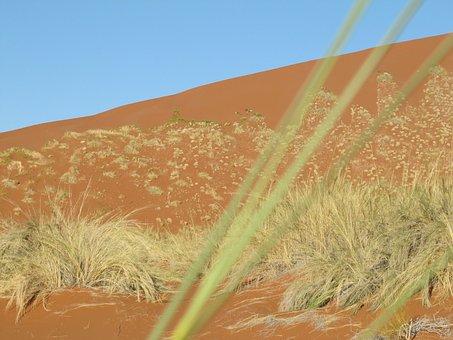 Desert, Namib, Namibia, Landscape, Sand, Sossusvlei