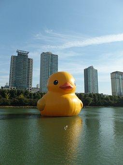 Rubber Duck, Jamsil, Songpa, Seokchon Lake
