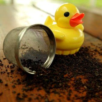 Duck, Tea Infuser, Tee, Teatime, Tea Mix, Drink