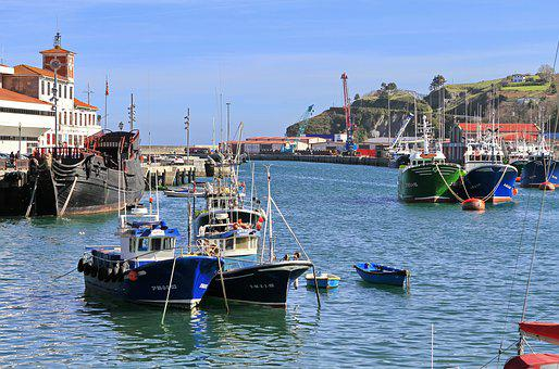 Port Of Bermeo, Port, Bermeo, Boats, Barca, Merlucero