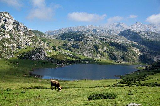 Mountains, Lake, Blue, Landscape, Nature