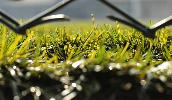 Grass, Field, Football, Detail, Macro, Plant, Game