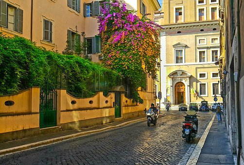 Rome, Motorcycle, Italy, Italian, Flower, Tree, Old