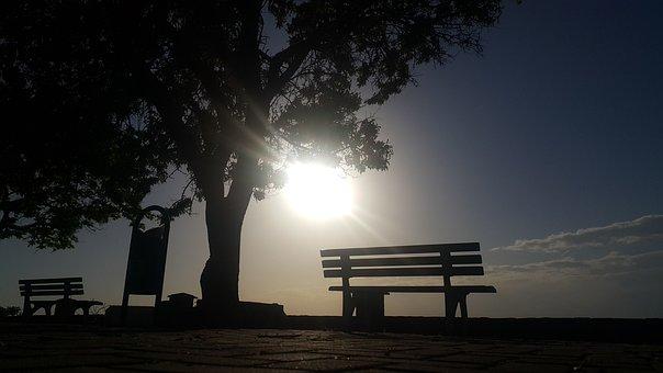 Sunset, Tree, Solar, Landscape, Clouds, Turkey, Cloud