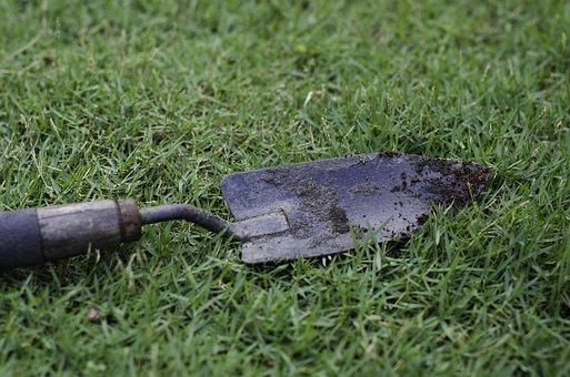 Hand Trowel, Garden Tool, Soil