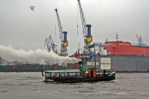 Rainy Weather, Harbour Cruise, Hamburg, Tiger