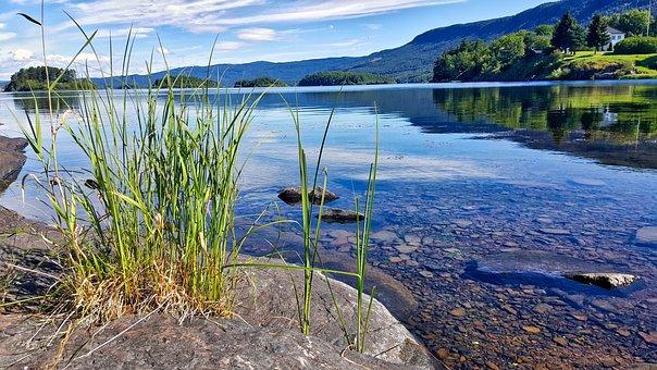 Landscape, Water, Lake, Nature, Tree, Tourism